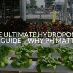 The Ultimate Hydroponics pH Guide – Why Ph Matters