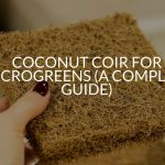 Coconut Coir For Microgreens (A Complete Guide)