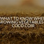 Everything You Need To Know When Growing Vegetables In Coco Coir